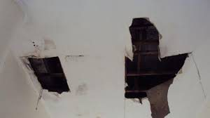 Read more about the article Penyebab Plafon Gypsum Rumah Cepat Rusak